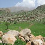 On the way to Rowandoz, south (Iraqi) Kurdistan.  Source: Gina Lennox 2014